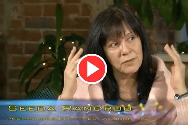 Tallinn TV Maatriks Hirmust, 2 osa